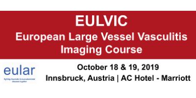 Stipendien für EULVIC Imaging-Kurs